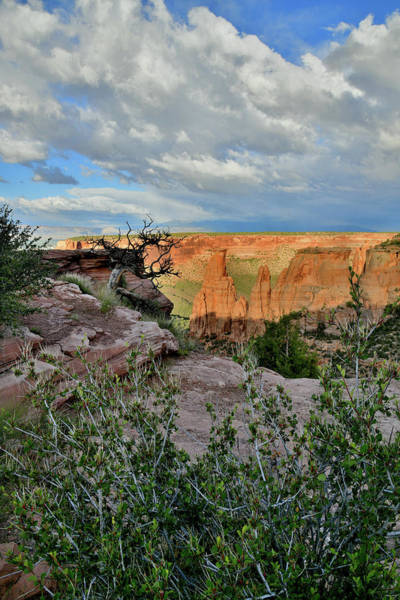 Photograph - Sun Setting On Colorado National Monument by Ray Mathis