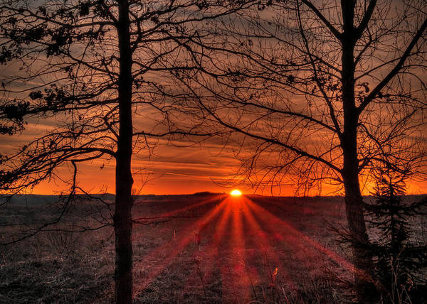 Photograph - Sun Setting Rays by Laura Hedien