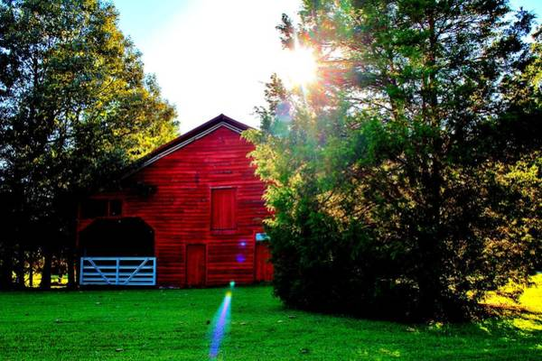 Photograph - Sun Shining Over Red Barn by Cynthia Guinn