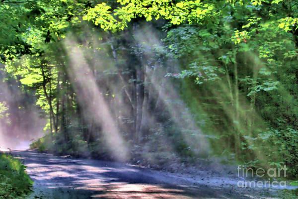 Photograph - Sun Streaks by Debbie Stahre