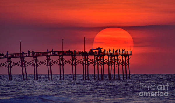 Photograph - Sun Umbrella by DJA Images