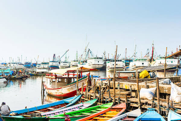 Wall Art - Photograph - Sunda Kelapa Old Harbour  With Fishing by Kzenon