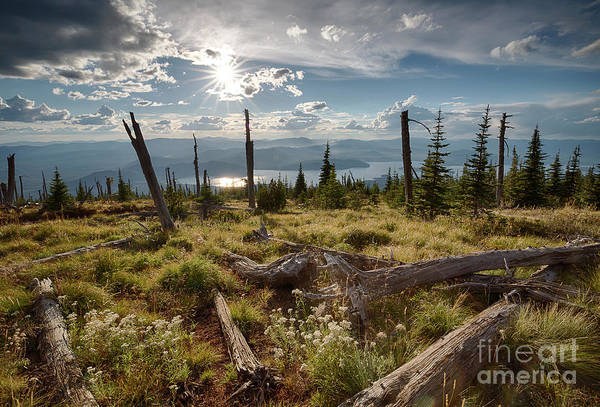 Wall Art - Photograph - Sundance Sun by Idaho Scenic Images Linda Lantzy