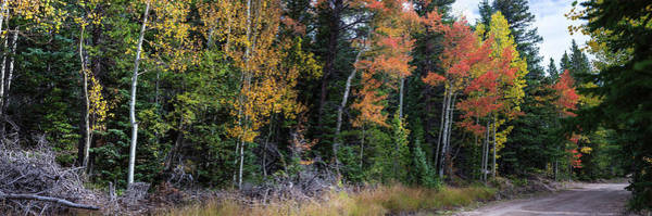 Wall Art - Photograph - Sunday Drive Wide Panoramic View by James BO Insogna