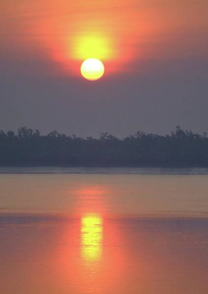 Ganges River Photograph - Sunderbans Sunrise by Copyright Wild Vanilla