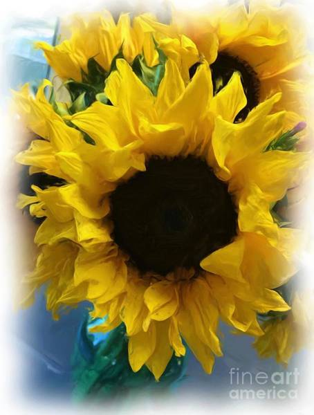 Photograph - Sunflower Digital Painting  by Carol Groenen