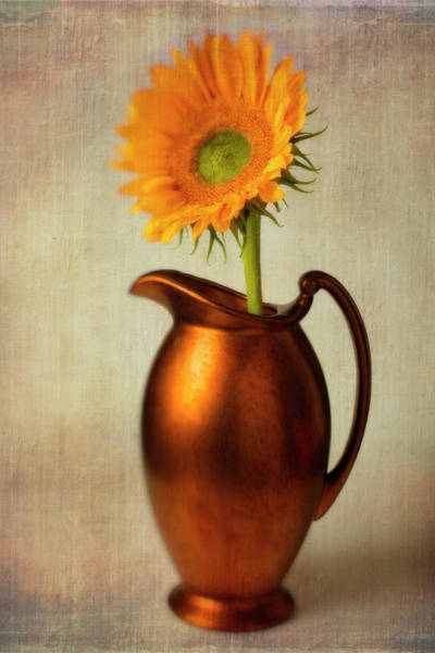 Wall Art - Photograph - Sunflower In Bronze Pitcher by Garry Gay