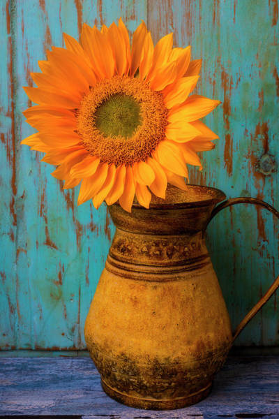 Wall Art - Photograph - Sunflower In Rustic Pitcher by Garry Gay