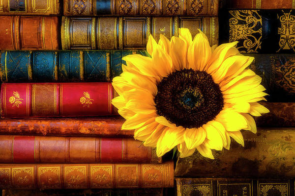 Wall Art - Photograph - Sunflower In Stack Of Books by Garry Gay