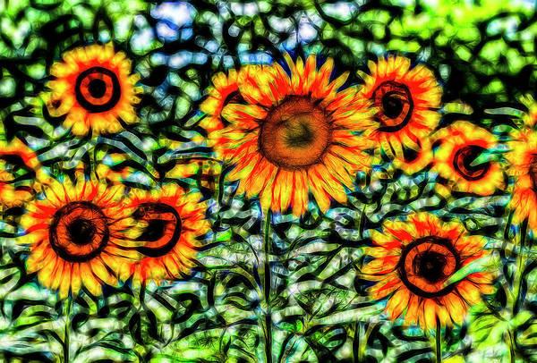 Wall Art - Photograph - Sunflower Kaleidoscope  by David Pyatt