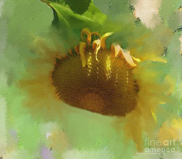 Digital Art - Sunflower by Kathie Chicoine
