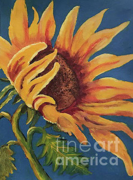 Painting - Sunflower by Linda Anderson