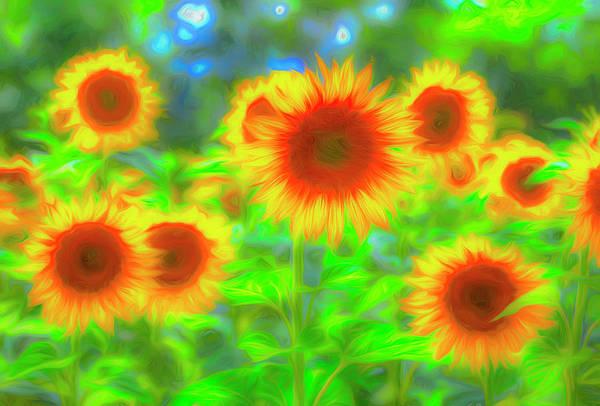 Wall Art - Photograph - Sunflower Pastel Art by David Pyatt