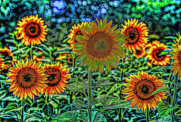 Wall Art - Photograph - Sunflower Vibrance by David Pyatt