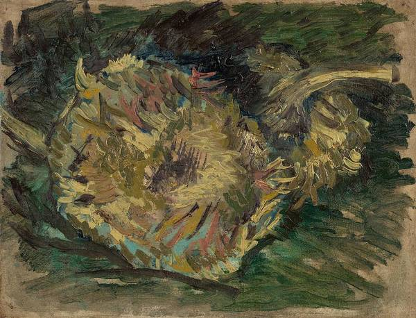 Wall Art - Painting - Sunflowers Gone To Seed. by Vincent van Gogh -1853-1890-