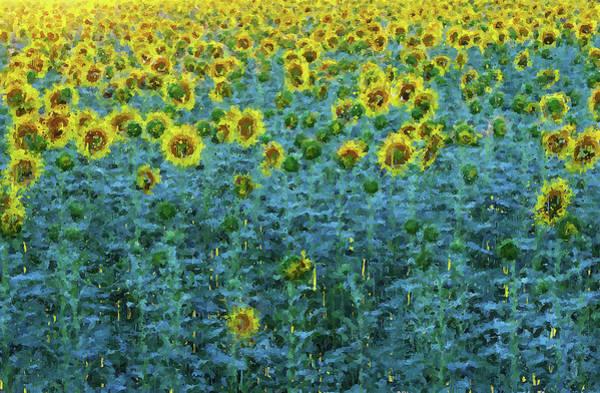 Painting - Sunflowers Paradise - 02 by Andrea Mazzocchetti
