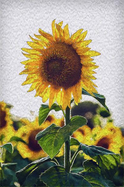 Painting - Sunflowers Paradise - 04 by Andrea Mazzocchetti