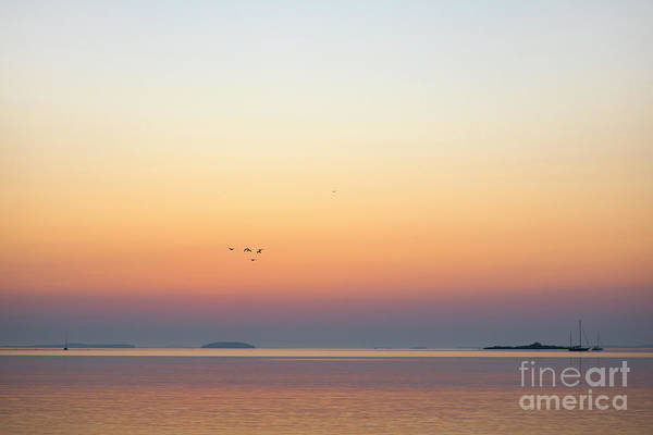 Wall Art - Photograph - Sunrise Over West Penobscot Bay, Maine by Diane Diederich