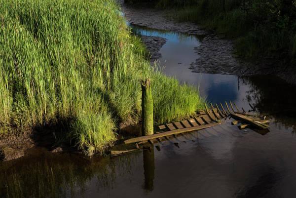 Photograph - Sunken Boat Ribs by Robert Potts