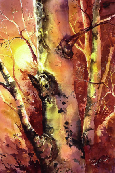 Painting - Sunlight Aspen by Connie Williams