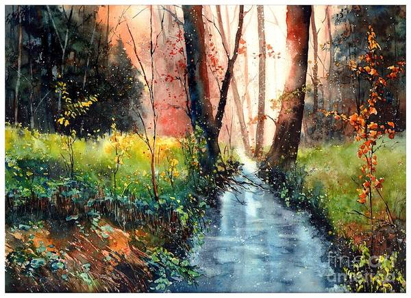 Wild Flower Painting - Sunlight Colorful Path by Suzann Sines