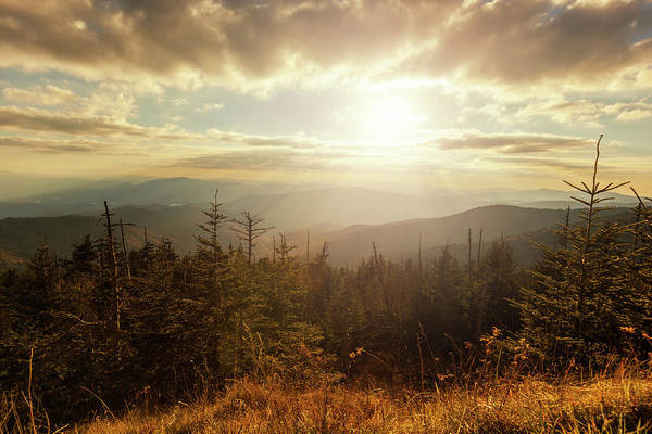 The Great Smoky Mountains Wall Art - Photograph - Sunlight In The Mountains by Moreiso