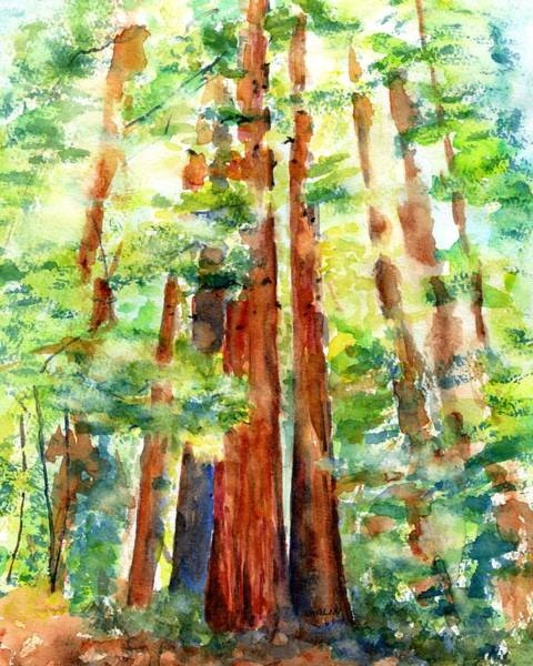 Painting - Sunlight Through Redwood Trees by Carlin Blahnik CarlinArtWatercolor