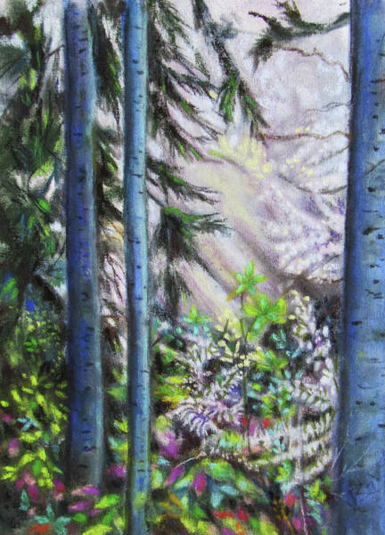 Painting - Sunlit Birches by Jean Batzell Fitzgerald
