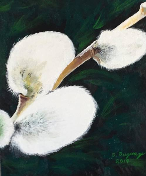 Painting - Sunlit Pussy Willow by Sharon Duguay