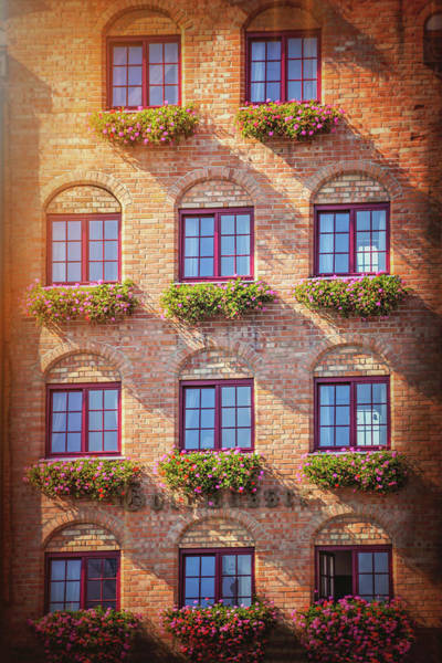 Wall Art - Photograph - Sunlit Windows Of Gdansk Poland by Carol Japp