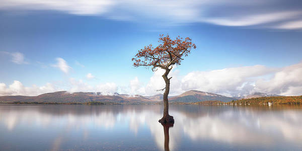 Photograph - Sunny Afternoon On Loch Lomond by Grant Glendinning