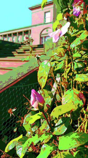 Digital Art - Sunny Like Florida by Joy McKenzie - Abbie Shores