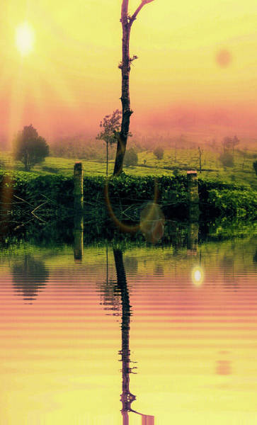 Photograph - Sunrise by AE collections