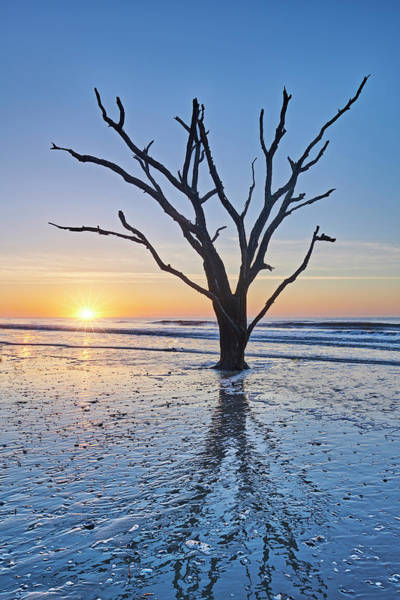 Photograph - Sunrise At Botany Bay by Jon Glaser