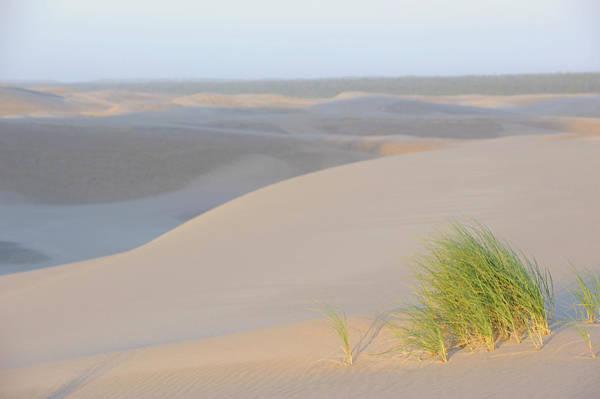 Oregon Dunes Photograph - Sunrise At The Oregon Sand Dunes by Shanna Baker