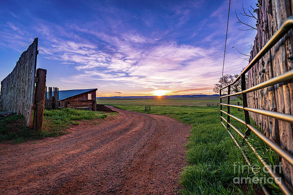 Wall Art - Photograph - Sunrise At The Oxford Ranch by Christopher Thomas