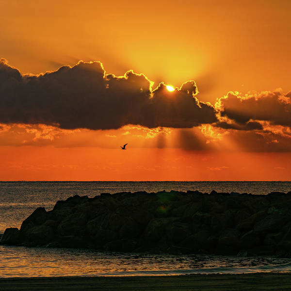 Wall Art - Photograph - Sunrise At Torrevieja by Mike Walker