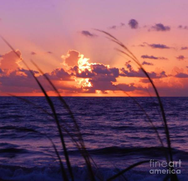 Wall Art - Photograph - Sunrise Boynton Beach 4 by Snapshot Studio