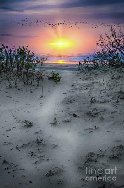 Wall Art - Photograph - Sunrise Flight by Dan Carmichael