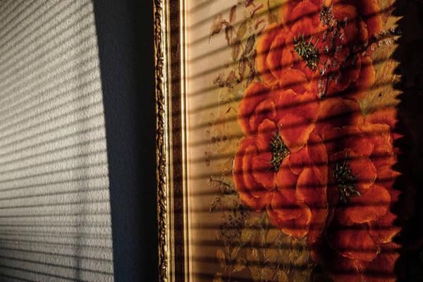 Photograph - Sunrise Flowers by Glenn DiPaola