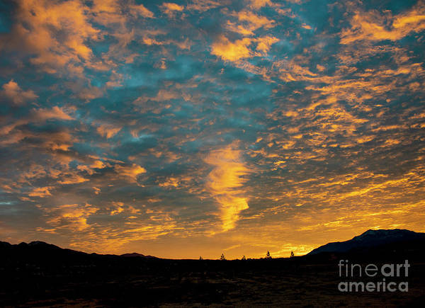 Photograph - Sunrise In Beaumont,ca by Mae Wertz