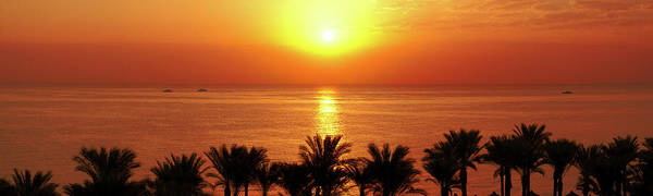 Photograph - Sunrise In Ras Um El Sid by Sun Travels