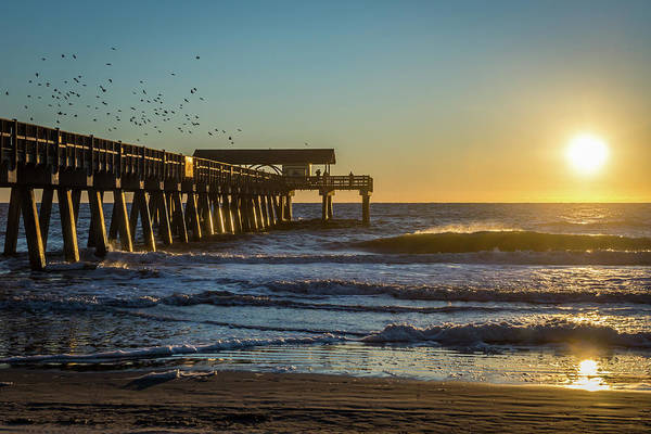 Photograph - Sunrise Murmuration by Framing Places