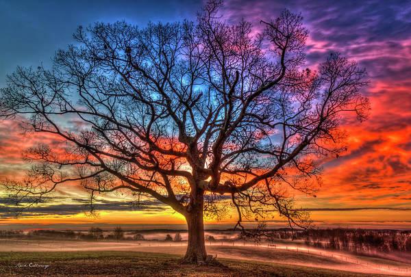 Photograph - Sunrise Oak Soli Deo Gloria Glory To God Alone Ga Farming Landscape Art by Reid Callaway