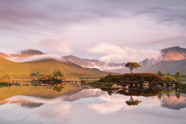 Moor Photograph - Sunrise On The Blackmount by Copyright