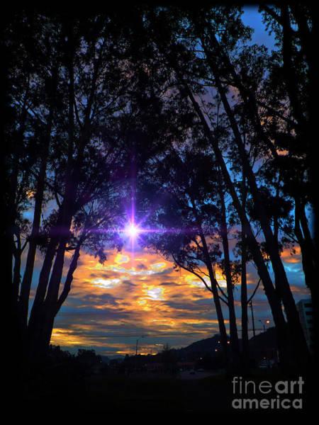 Wall Art - Photograph - Sunrise On The Bosque II by Al Bourassa