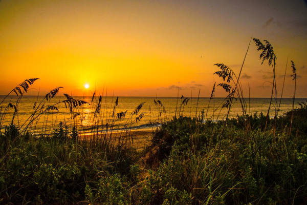 Photograph - Sunrise On The Dunes  by John Harding