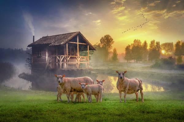 Southern Charm Digital Art - Sunrise On The Farm by Debra and Dave Vanderlaan