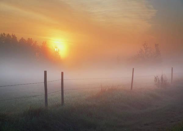 Photograph - Sunrise Over Morning Pasture by Dan Jurak