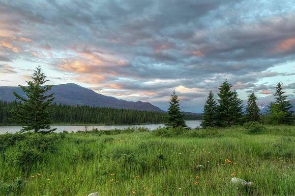 Photograph - Sunrise Over The Athabasca River by Paul Schultz
